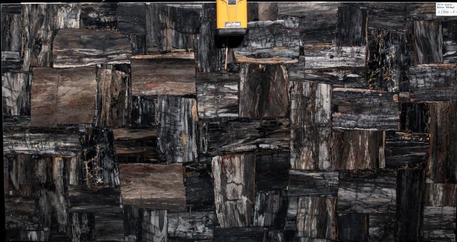 Petrified Wood Black Semi Precious Slab