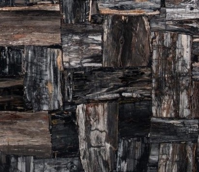 Petrified Wood Black Semi Precious Texture